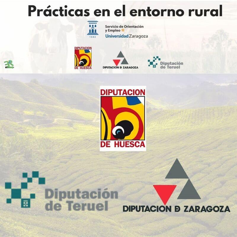 Prácticas en el entorno rural de Huesca, Teruel y Zaragoza.